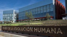 museoevolucionhumana.jpg