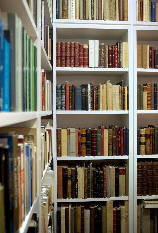 libreria-17.jpg